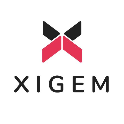 Xigem Technologies